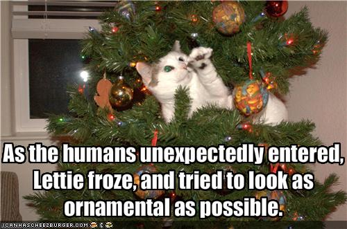 funny-pictures-cat-in-tree-tries-to-look-ornamental